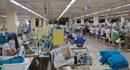 Tiền Giang: Phấn đấu giải quyết việc làm cho 20.000 lao động