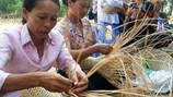Thêm 900.000 lao động nông thôn sẽ được đào tạo nghề