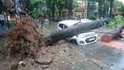 7 người chết, mất tích và 21 người bị thương do bão số 1