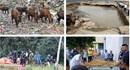 """NÓNG 24H: Bêtông cốt thép ở đập điều tiết lũ bị nước lũ """"xé"""" nát"""