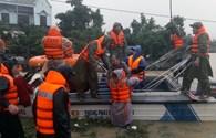 226 triệu đồng cứu trợ đợt 1 tới vùng lũ Bình Định