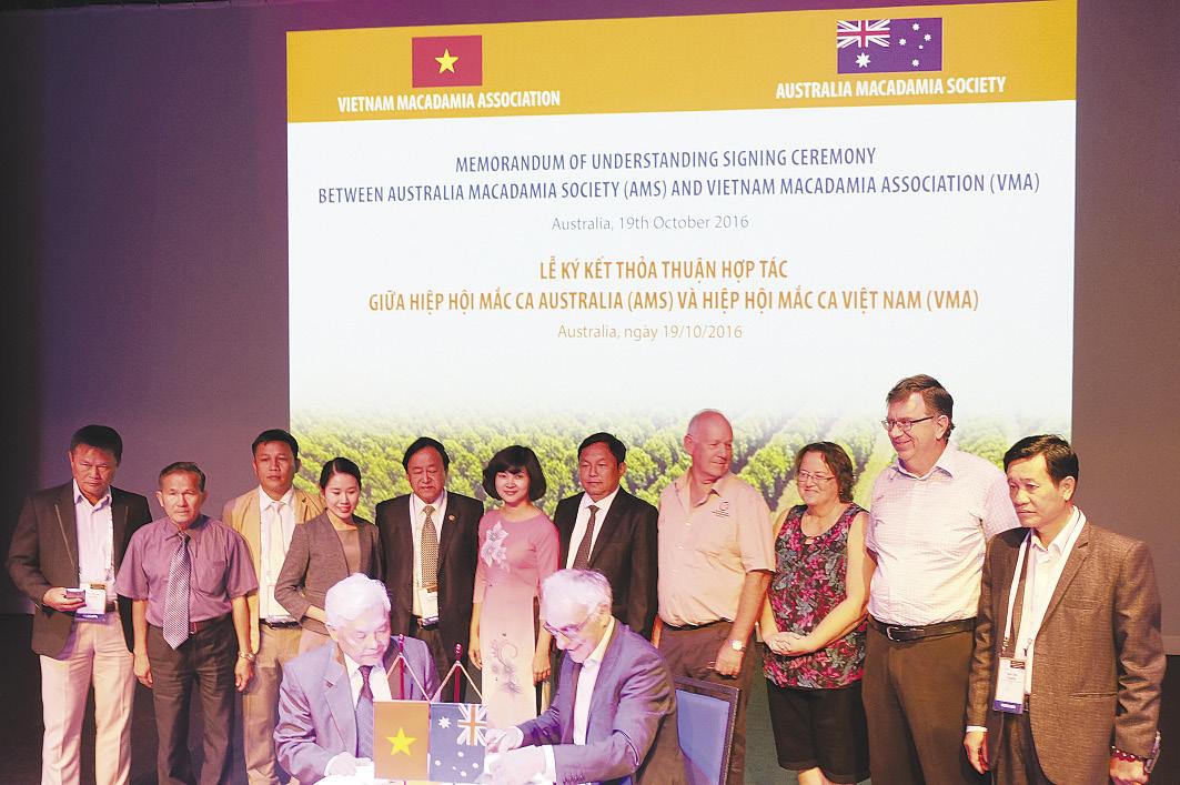 """""""Cái bắt tay"""" của Hiệp hội Mắc ca Việt Nam và Hiệp hội Mắc ca Úc"""