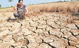 """""""Bơm"""" 560 triệu USD hỗ trợ phát triển đồng bằng sông Cửu Long"""