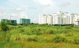 TPHCM sẽ thu hồi khoảng 7.000ha đất trong năm 2017