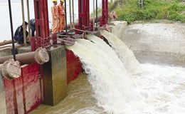 Xả 5 tỉ mét khối nước phục vụ gieo cấy vụ đông xuân