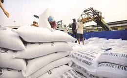 Tồn kho gần 1 triệu tấn gạo - xuất khẩu tiếp tục khó