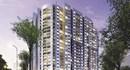 Ngày 30.7, T&T Land mở bán dự án T&T Riverview