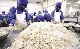 Úc vẫn chuộng nhập khẩu thủy sản của Việt Nam