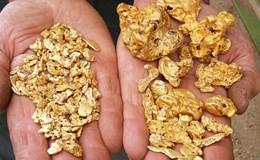 Giá vàng tuần tới: Chuyên gia bảo tăng, giới đầu tư nói giảm