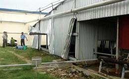 Tai nạn Lao Động nghiêm trọng:Có thể xử lý hình sự doanh nghiệp