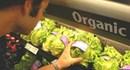 Một số lưu ý khi sử dụng thực phẩm hữu cơ
