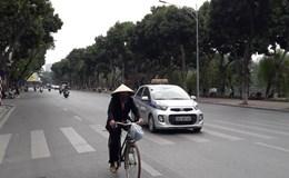 Biến tuyến đường đẹp nhất Hà Nội thành điểm kinh doanh