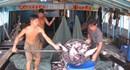 Bố trí kinh phí phòng, chống dịch bệnh trên cá tra