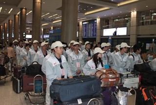 Lao động VN cư trú bất hợp pháp tại Hàn Quốc tự nguyện về nước: Được miễn, giảm các hình thức xử phạt