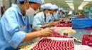 Tổ chức CĐ TPHCM tập trung chăm lo tết cho CNLĐ