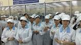 Đại sứ quán Việt Nam tại UAE: Cảnh báo tình trạng bạo động tự phát của lao động Việt