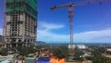 Thành uỷ Đà Nẵng yêu cầu báo cáo về vụ xây dựng 40 nền móng biệt thự không phép tại Khu Bảo tồn thiên nhiên Sơn Trà