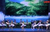 Video: Vở ballet Hồ thiên nga Lung linh huyền ảo với công nghệ 3D