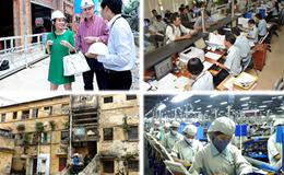 Kinh tế 24h: Thu Minh đâm đơn kiện chủ đầu tư; gần 1 tấn gà thải loại từ Trung Quốc bị tiêu hủy