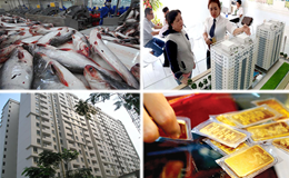 Kinh tế 24h: Cạnh tranh giành thị phần căn hộ giá rẻ ở TPHCM; Giá cá tra tăng vọt