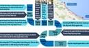 Thảm họa cá chết ven biển miền Trung: Hành trình 85 ngày tìm nguyên nhân và thủ phạm