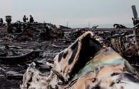 Sĩ quan cảnh sát Hà Lan bị bắt vì rao bán online vật phẩm từ hiện trường MH17