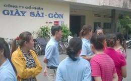 Cần thu hồi đất sử dụng trái phép của Cty cổ phần Giày Sài Gòn