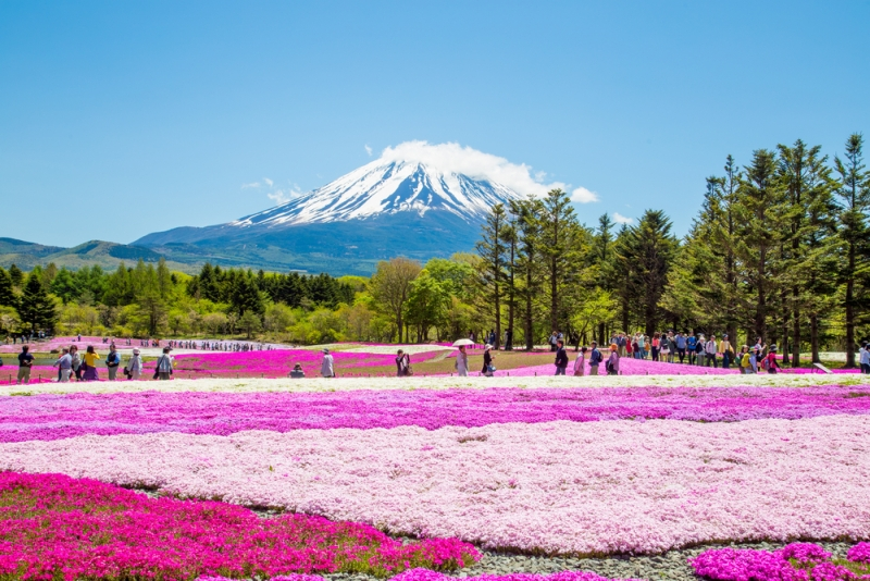Kết quả hình ảnh cho nơi nào đẹp nhất thế giới