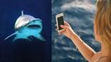 Tự sướng gây chết người nhiều hơn cá mập cắn