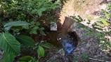 Kiên Giang: Hai huyện đảo lo đối phó với sốt xuất huyết