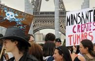 Hơn 400 thành phố toàn cầu biểu tình chống cây trồng biến đổi gene của Monsanto