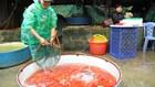 """Sôi động chợ cá Hà Nội trước ngày """"Táo quân về trời"""""""