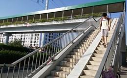 Lắp mái che cho cầu vượt bộ hành
