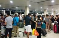 Trang web hãng hàng không bị tấn công, hàng trăm khách vật vạ chờ làm thủ tục