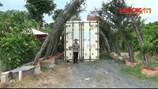 """Đặt container gần quán Xin Chào nhận ngay quyết định """"vi phạm xây dựng"""""""