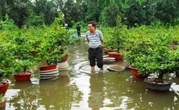 TPHCM: Nắp cống ngăn triều hỏng, hàng trăm nhà ở Thủ Đức bị ngập