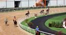 Lần đầu tiên môn đua ngựa tái xuất ở Đại Nam