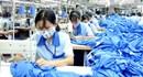 Phú Thọ: Năm 2015 giải quyết việc làm cho 23.800 người