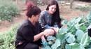 Vườn rau xanh an toàn tự tay trồng của NSND Thanh Hoa