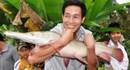 Cá da rắn, mắt đỏ ở Hà Tĩnh có nguồn gốc từ Bắc Mỹ