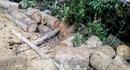 Vụ phá rừng phòng hộ đầu nguồn xã Khánh Phú: Chuyển hồ sơ sang cơ quan cảnh sát điều tra