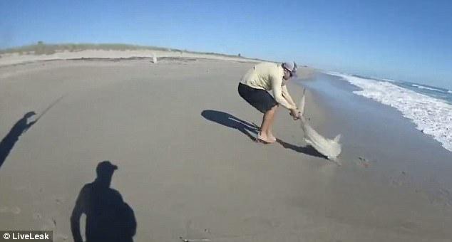 Ngoạn mục tuyệt chiêu dùng UAV câu cá mập dễ như trở bàn tay