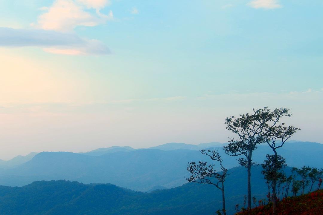 Mây vờn lưng núi lúc bình minh ở Tà Năng – Phan Dũng - Ảnh minh hoạ 4