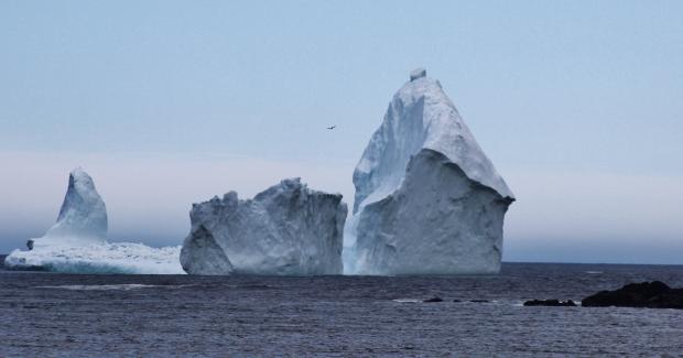 Thị trấn nhỏ hút du khách nhờ tảng băng trôi khổng lồ - Ảnh minh hoạ 5