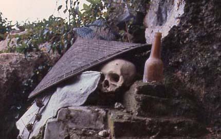Xác chết bật quan tài tìm về nhà: Đau đầu nhà khoa học